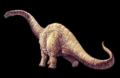 Rutas de dinosaurios de Enciso