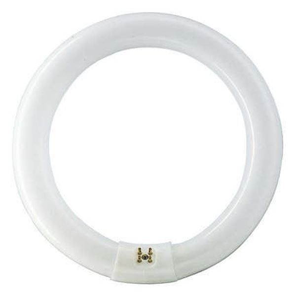 Tub fluorescent circular Philips Master TL-E Circular 40W, G10q, 4000k, lumina neutra http://www.etbm.ro/tuburi-fluorescente-circulare