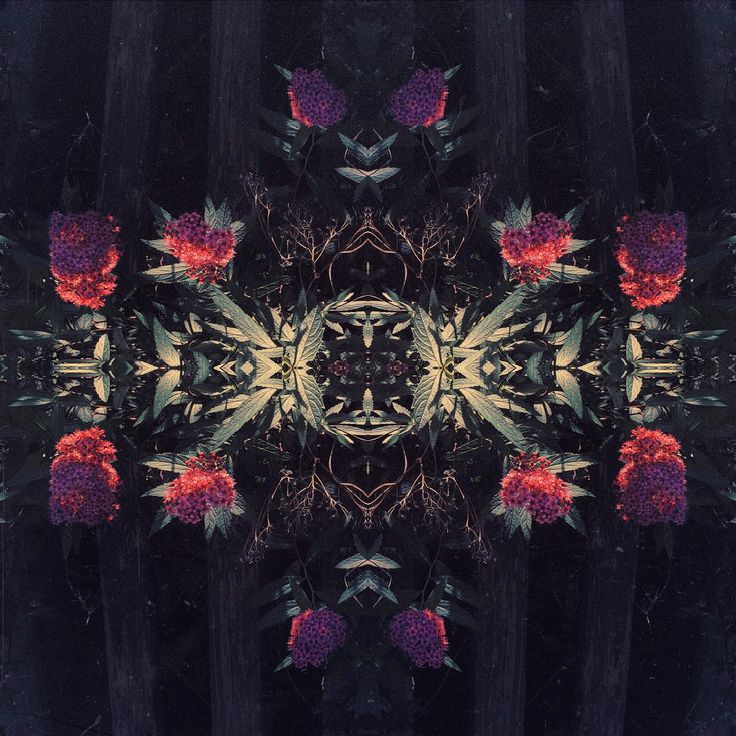 symmetry - album art