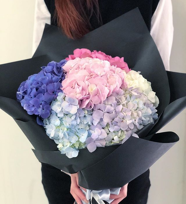 A Giant Bouquet Of Just Hydrangeas The Simplest Way To Send Your Love 1 More Week To Valentines Da Hydrangea Not Blooming Flower Delivery Flower Arrangements