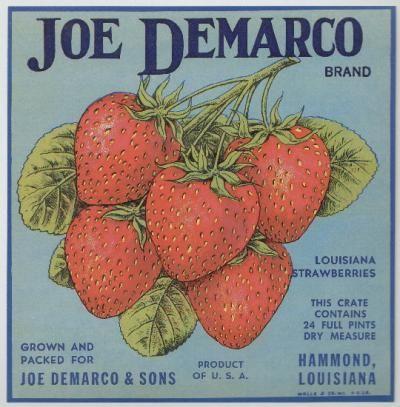 Vintage Fruit Crate Label