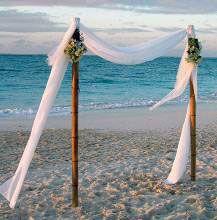 477 best beach wedding images on pinterest beach weddings simple bamboo arch for beach wedding junglespirit Images