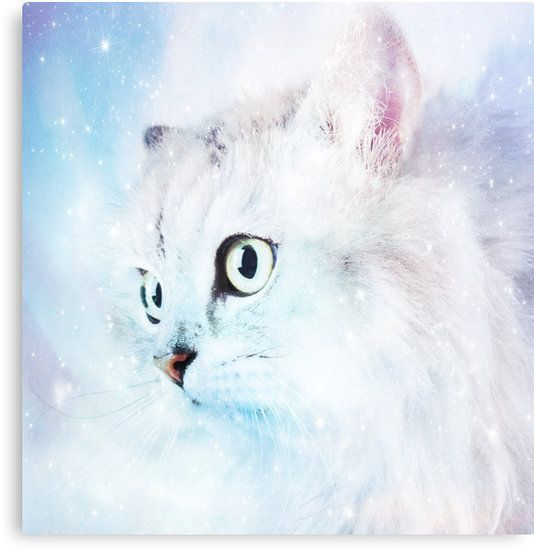 Fluffy starry cat • Also buy this artwork on wall prints, apparel, stickers, and more.