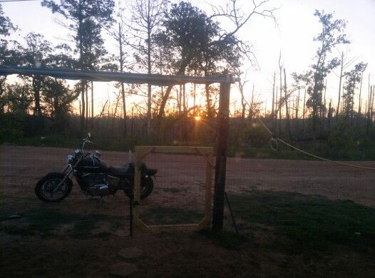 Sunrise in the holler