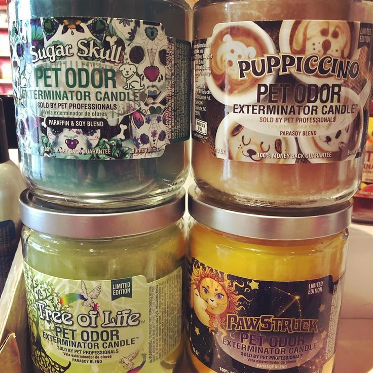 New Specialty Pet Products candles now available at Woof