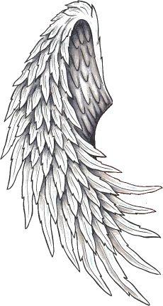 tatouage aile d ange dos 147848495242