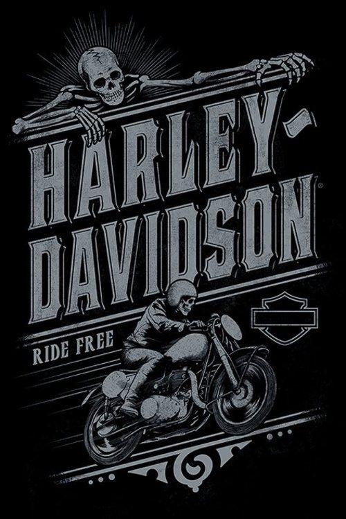 Résultats de recherche d'images pour «model frame posteur harley davidson»