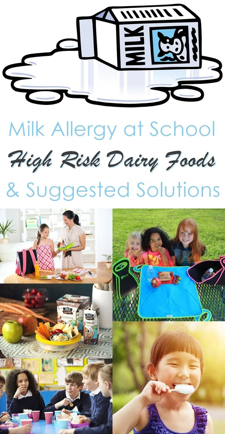 204 best food allergies in school images on pinterest food milk allergy at school high risk dairy foods suggested solutions forumfinder Images