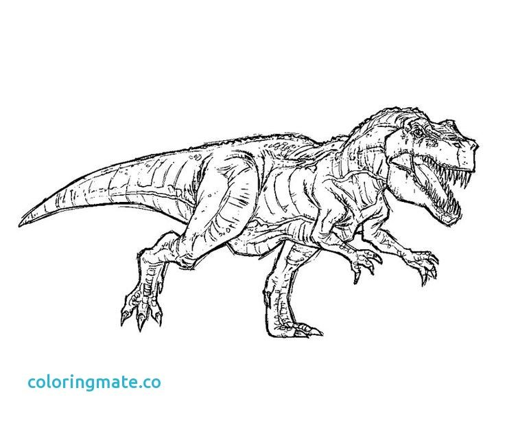 Related Image Coloring Pages Dinosaur Coloring Pages Jurassic Park T Rex