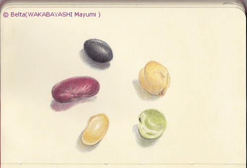 2013_02_18_beans_02_s    I love beans.  garbanzo bean,green pea,soybean,kidney bean, black soybean.    For this piece I used:  Faber-Castell Polychromes and Moleskine sketchbook.    © Belta(WAKABAYASHI Mayumi) Do not use this image without permission.