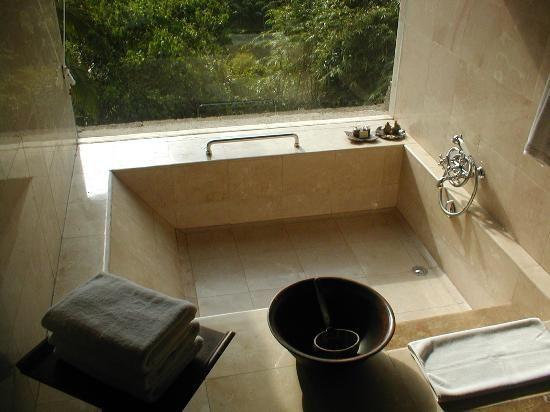 Sunken Bath With Window Bathroom Ideas Pinterest