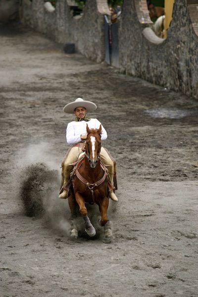 Charreria, the art of Mexican Rodeo DSC08996 copy