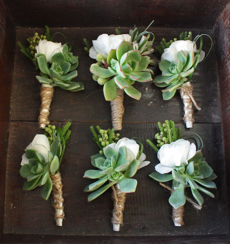 wedding bouquet with succulents and roses | White ranunculas and echeveria boutonnieres accented with brasilia ...