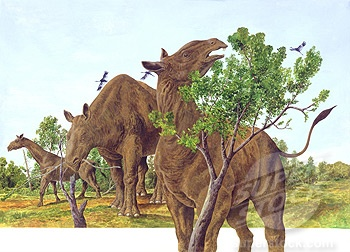 160 best images about Prehistoric Animals on Pinterest ...
