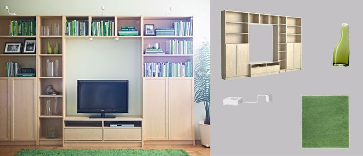 """""""Baby proof"""" living room media storage solution/bookcase/display case"""