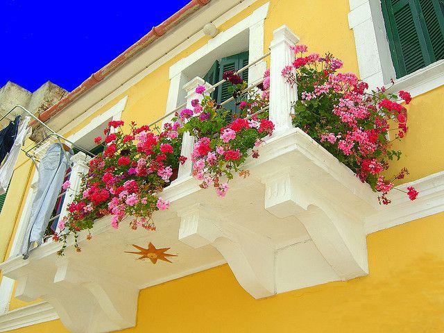 sárga színű épület, fehér kiemeléssel, színes muskátlival