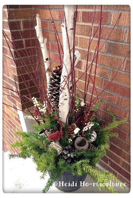 Heidi Horticulture: This Year's Christmas Containers