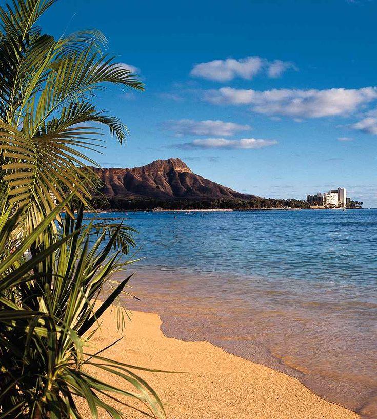 Sheraton Waikiki - Sheraton Waikiki.