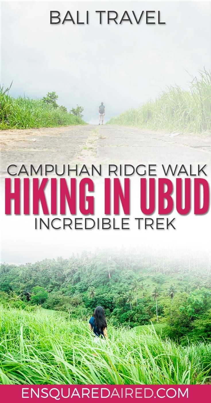Why The Beautiful Campuhan Ridge Walk in Ubud Bali Is Worth A Visit | If you are looking for Bali travel tips and beautiful places to visit, especially in Ubud, click to read more! This guide is something you should consider in your itinerary for Bali. #bali #ubud #balitrip #ubudbali #balitravel |Romantic travel | Asia Travel | Round the world trip | Things to do | Culture Travel |Outdoor Travel |Bali Indonesia | Things to do in | Honeymoon | Ubud