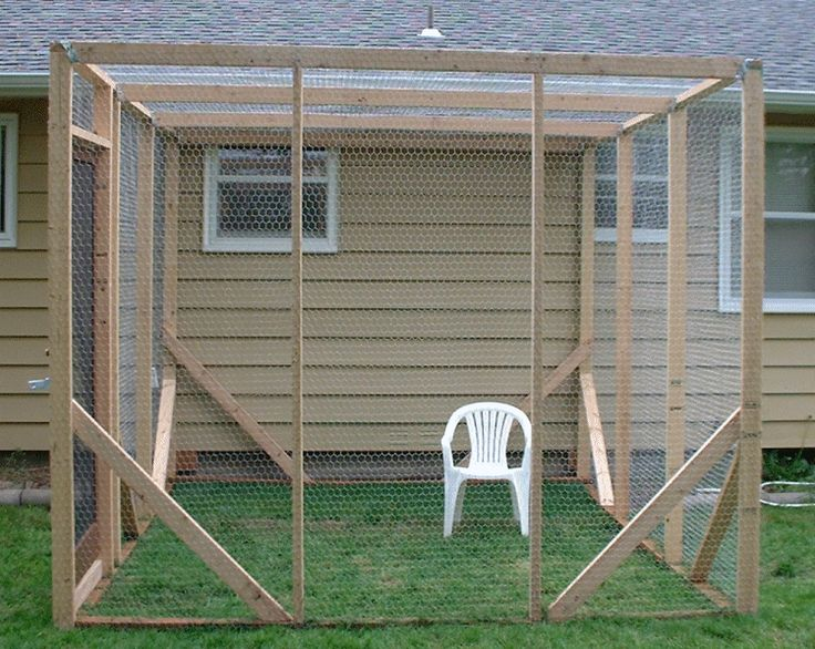 Outdoor Cat Enclosure Pets Pinterest Things To Diy