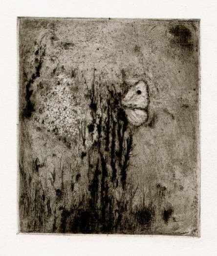 Bohuslav Reynek Bílý motýl / White Butterfly lept a suchá jehla / etching and dry point 14,7 x 12,4 cm, 1955, otisk z původní desky, opus G 363