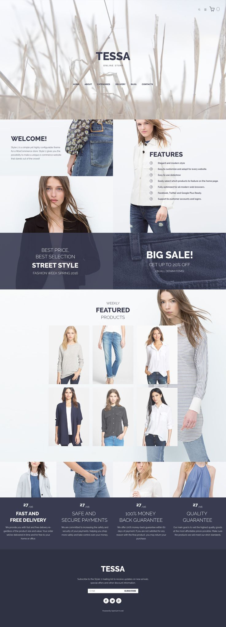 198 best opencart themes images on pinterest fashion store responsive opencart template httpstemplatemonster pronofoot35fo Choice Image