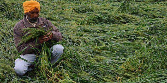 300 crore package to save standing kharif crops - http://www.sharegk.com/curent-affairs/latest/300-crore-package-to-save-standing-kharif-crops/ #gk #GeneralKnowledge #Quiz #Awareness #InterviewQuestion  #EntranceExam #OnlineTest #Aptitude #BankExam #GovtExam