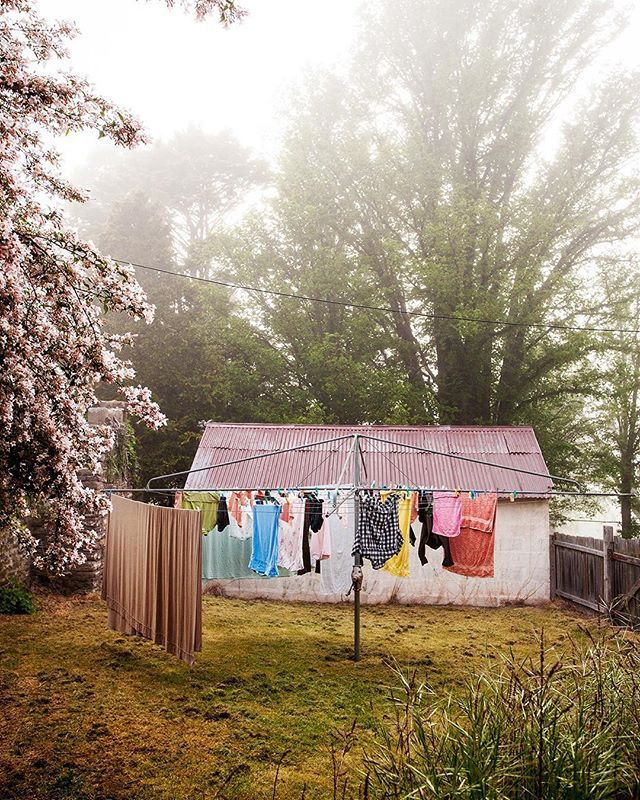 Morning washing at Lucy Cullitons's. #shelterhowaustralianslive Available in my print shop. Click link. X