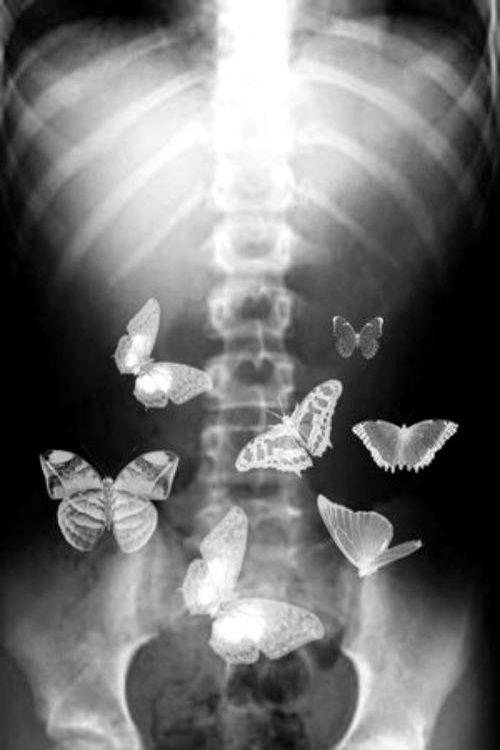 inside my belly ,,stupid butterfly :-)