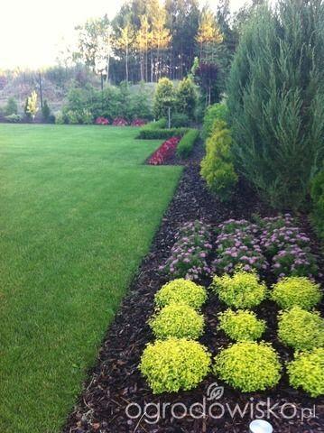 Mały ogród pod Białymstokiem - strona 33 - Forum ogrodnicze - Ogrodowisko