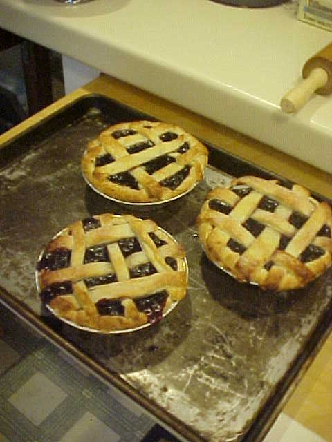 Blueberry pies from our little blueberry bush for sale this weekend at our garage sale!