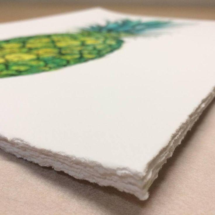 💚 ...y aquí el resultado final con el barbado manual aplicado al papel Canson Infinity Arches Aquarelle Rag 310gsm. 💚 Obras de Andrew Watson Designs disponibles a través de su página web ✨http://www.andrewwatsondesigns.com/✨ thanks Andrew ☺️ #awdesigns #giclee #gicleeprint #pineapple #limitededition #limitededitionprints #botanicalillustration #deckle #decklededge#deckled #deckleedge #illustration #ilustracion #artprint #giclee #gicleeprint #graficartprints #gap #fineart #fineartprints…