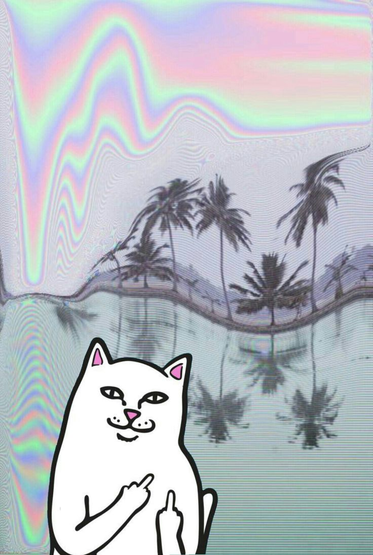 Ripndip iphone wallpaper #ripndip #middle #finger #cat #wallpaper #iphone #holographic #distorted #background