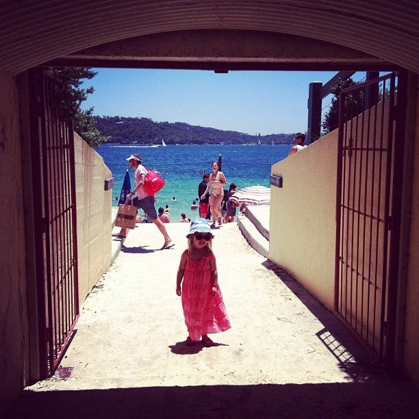 My junebuggy 455 days ago via #morningpics... at Shark Bay #nielsenpark #sydney