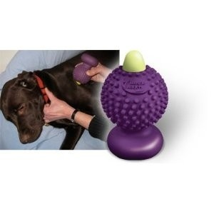pets / Muscle Angels� Massagers for PETS, Canine Equine Feline MassagerPets Massage, Equine Feline, Canine Equine, Feline Massage, Muscle Angels, Pets Projects, Baby Puppies, Pets Relatable, Dogs Pawcess