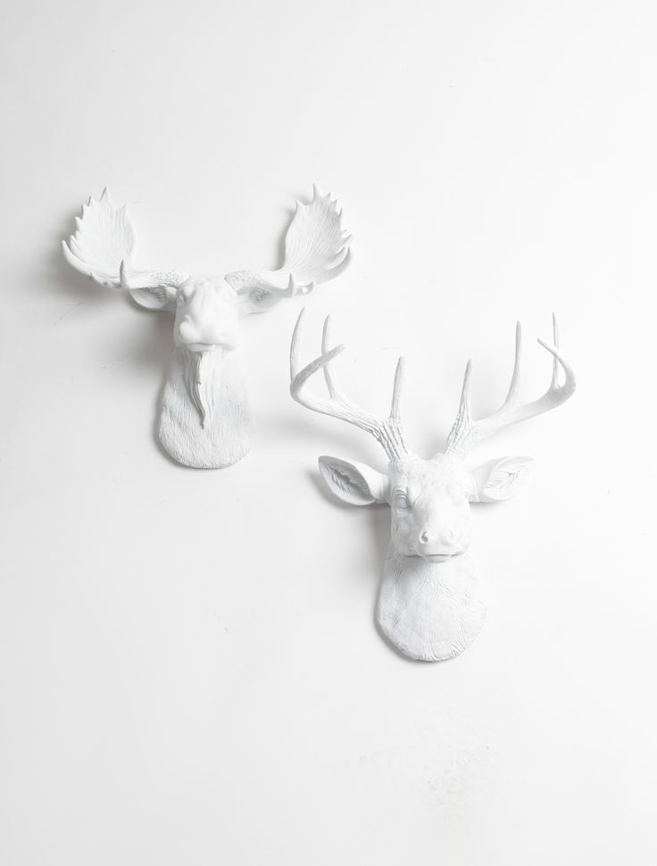 White Faux Taxidermy - Mini Moose