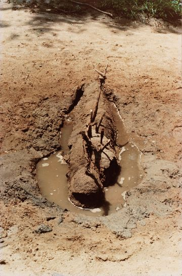 Ana Mendieta, Untitled (Fetish series, Iowa), 1977. Chromogenic print, 20 × 13 1/4 in. (50.8 × 33.7 cm). Whitney Museum of American Art, New...