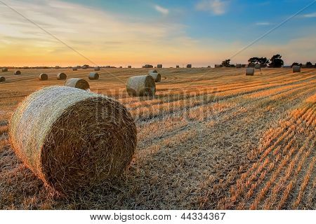 Haybales in Sunset