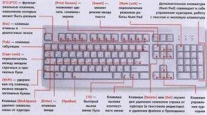 Сегодня мы с Вами поговорим о клавишах на клавиатуре. По сути клавиатура — это пульт управления нашим персональным компьютером и от знания назначения каждой клавиши на ней зависит навык пользования данным устройством. О назначении клавиш на клавиатуре и пойдет речь в данной статье. F1-F12 — функции этих клавиш зависят от свойств конкретной программы, работающей в данный момент времени. А иногда и от свойств операционной системы, на которой Вы работаете. В большинстве случаев клавиша F1…