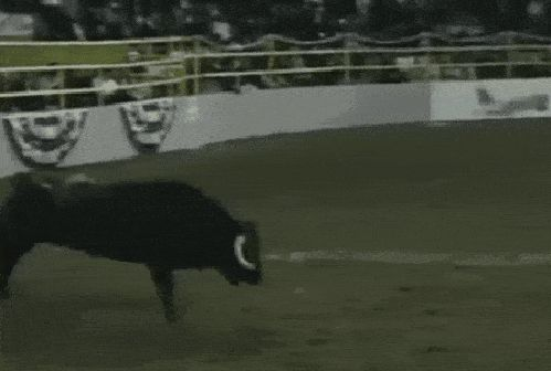 21 Best GIFs Of All Time Of The Week #110 from best GOAT and Best of the Web