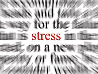 Chronic stress and high levels of cortisol create long-lasting brain changes.