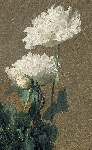 "Henri Fantin-Latour ""Poppies"" (detail) 1891 by Plum leaves on Flickr.Henri Fantin-Latour ""Poppies"" (detail) 1891 Ignace Henri Jean Fantin-Latour (1836-1904) French painter and lithographer."