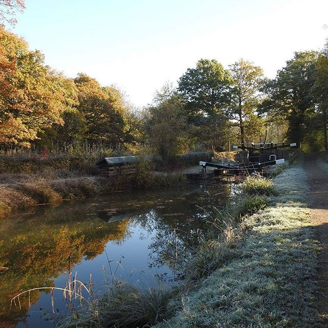 A frosty autumn morning at Brewhurst Lock  on the Wey and Arun Canal in Loxwood, West Sussex. #autumn #autumncolours #autumntrees #autumnleaves #weyandarun #weyandaruncanal #canal #relection #reflections #canals #loxwood #westsussex #sussex #nature #naturephotography #nature_perfection #countryside #beauty #beautiful #trees #frost #frosty #water #watercolour #watercolours