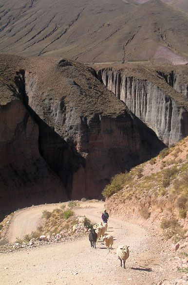 Fotos de Humahuaca: Paisajes y Fotografías del norte argentino