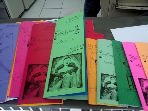 Edições 1 e 2 do Bolezine, narrativas de uma estagiaria.