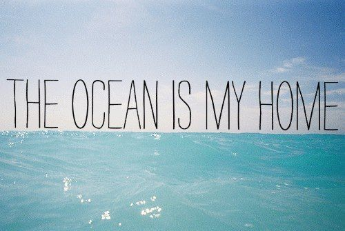 Home sweet home.: At Home, Inspiration, Surfing, Beaches Life, The Ocean, Sea, Summer Lovin, Beaches Bum, Summer Quotes
