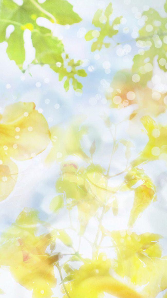 H5 قماش الخلفية Image Background