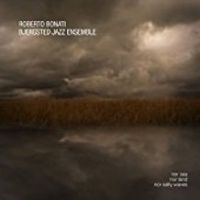 Roberto Bonati: Nor Sea, nor Land, nor Salty Waves jazz review by Duncan Heining, published on April 30, 2017. Find thousands reviews at All About Jazz!