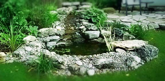pictures of small backyard gardens | Spicing up your Garden with Small Garden Ponds