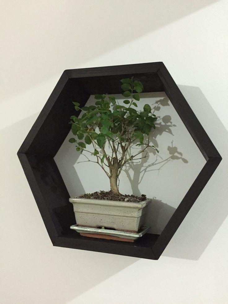 Hexagonal wood shelf